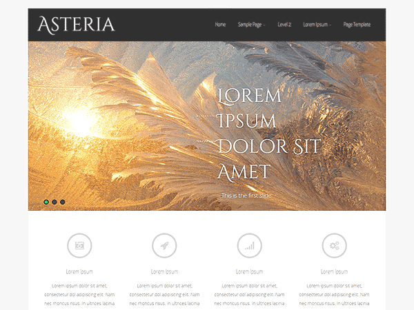 Download Asteria Lite - Free Responsive Wordpress Portfolio Themes 2015