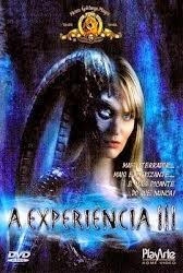 Baixar Filme A Experiência 3 DVDRip AVI Dublado