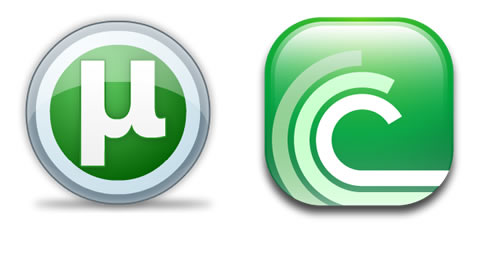 how to work with torrent