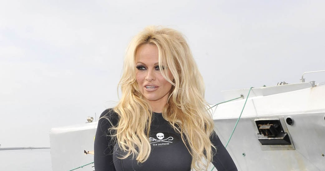 adult video of pamela anderson pussy