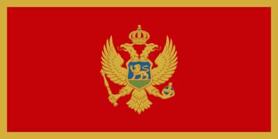 Download Montenegro Flag Free