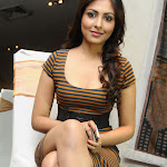Madhu Shalini Super Sexy Legs and Cleavage Show In a Tight Dress At Telugu Film 'Department' Press meet