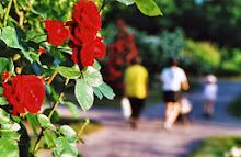 Famille et fleurs