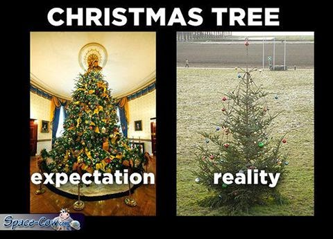 funny Christmas tree expectation
