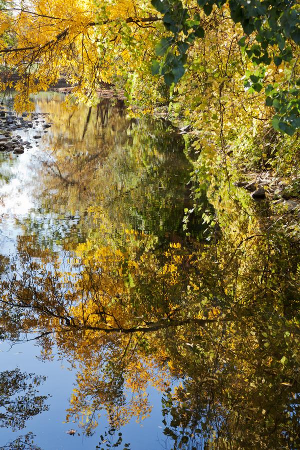 Urban Wilderness Autumn Cedar Creek Park