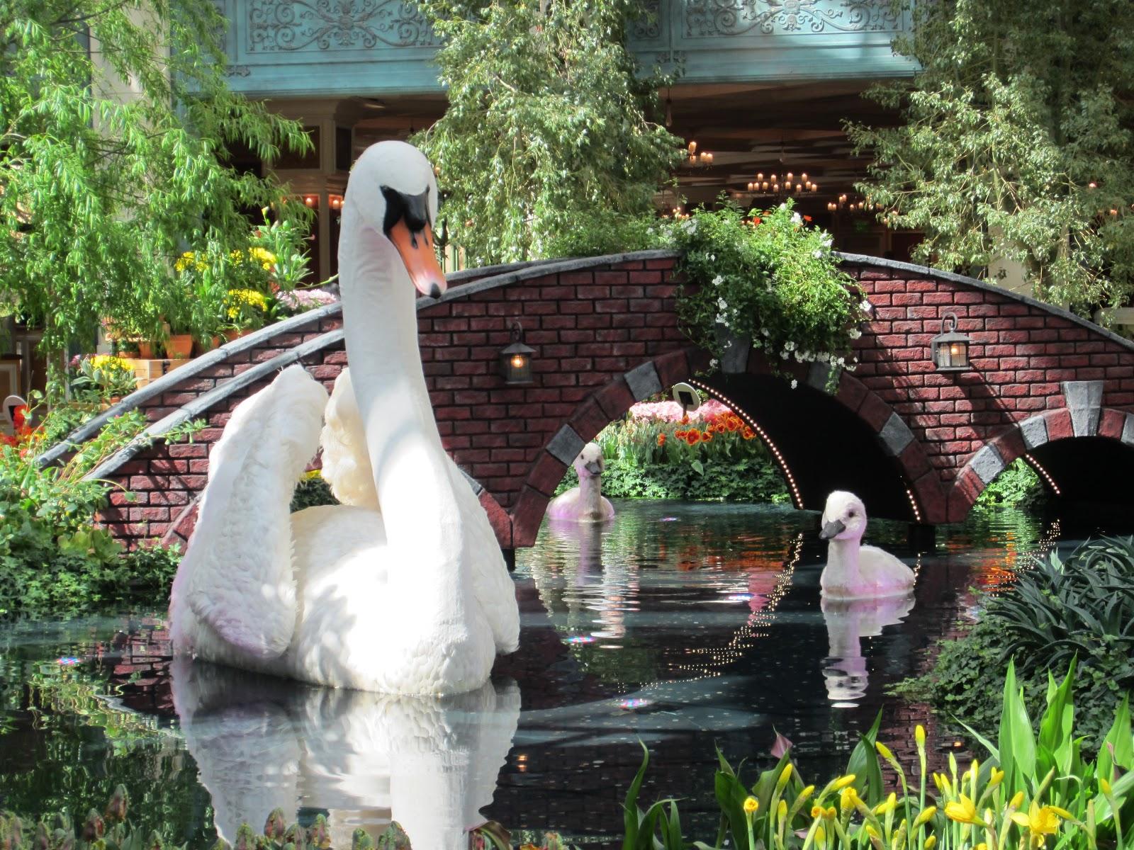 las vegas hotels to see
