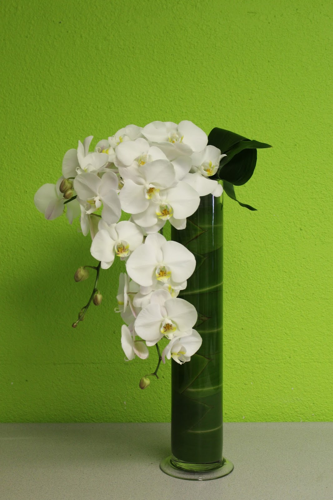 Layered grouping of white waterfall phalaenopsis orchids las stylish white waterfall phalaenopsis orchid vase arrangement las vegas flowers floridaeventfo Choice Image