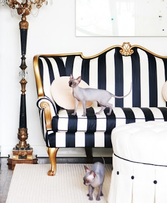 This Fabulous Black And White Stripes Chair With Gold Trimmings Creates A  Parisian Chic Look To This Living Room.