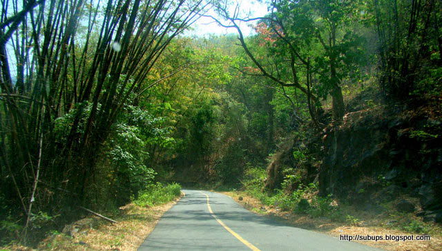 beautiful roads in Kerala