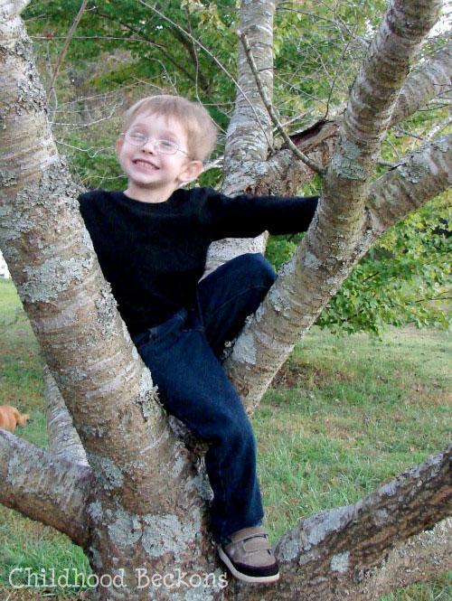 kids climbing trees