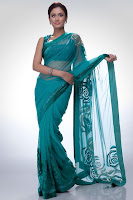 actress in saree, Indian Sarees, hot actress hindi, Indian Girl in Saree, New Saree Designs