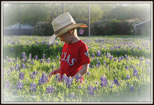 Texas  Spring