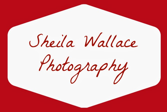 sheila wallace photography