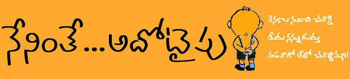 █████ నేనింతే ...అదోటైపు █████