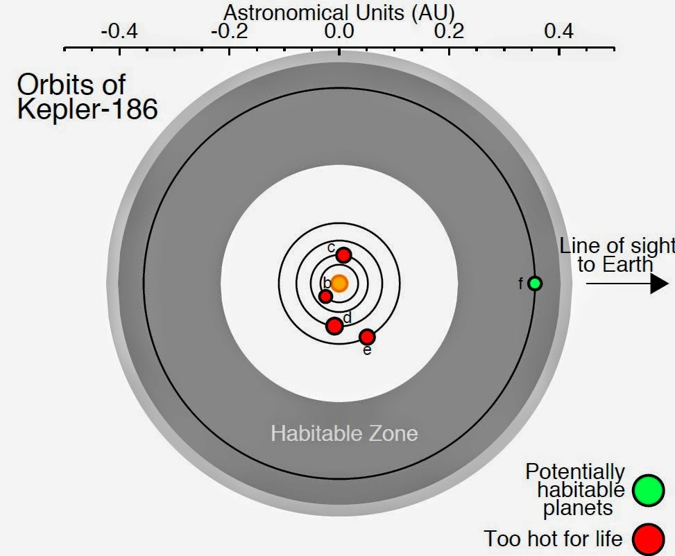 Habitable Zone Venus in The Habitable Zone of a