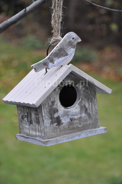 Dokarmiajcie ptaki zimą