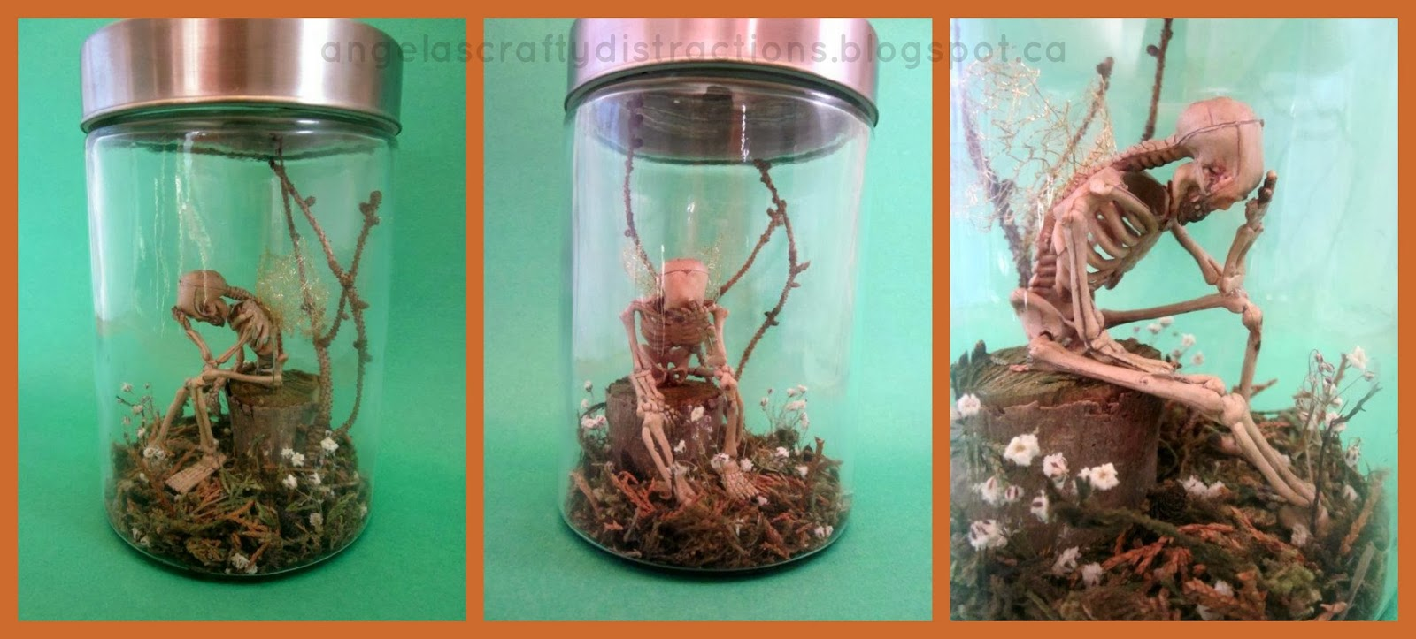 the gallery for gt real fairies alive in a jar