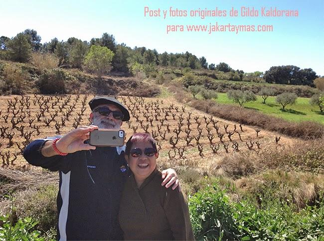 En las viñas de Castelo de Pedragosa, Barcelona