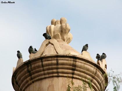 El coronament de la Torre d'Aigües del carrer de Cartellà. Autor: Carlos Albacete