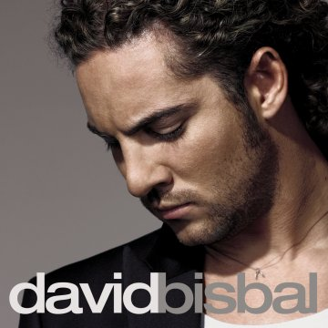 letras de la cancion digale de david bisbal: