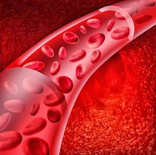 Hemofilia - Você sabe o que é?