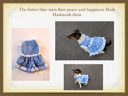 Rosh Hashanah dress by Lilly Foschino Dog Fashion