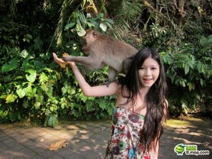 FOTO Monyet Ini Selamba Je Tarik Baju Awek Ini Sehingga