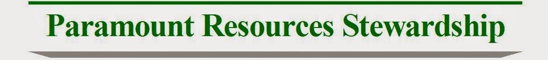 PARAMOUNT RESOURCES STEWARDSHIP