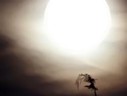 Vollmond wie ein ''Sandsturm'' in der Wüste...