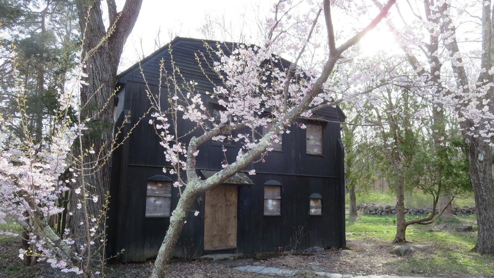 Veblen House