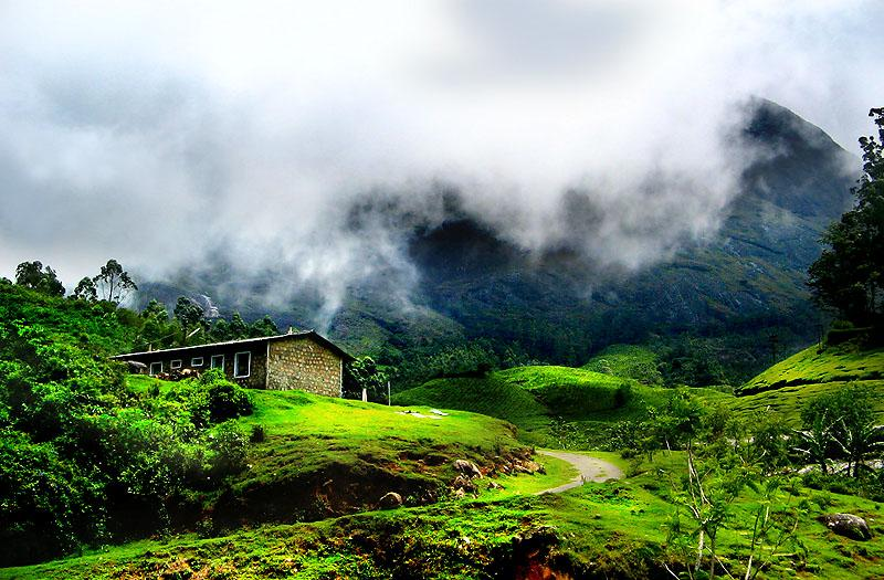 Wallpapers Unlimited Munnar Hill Station Kerala