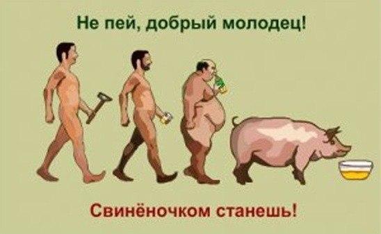 kak-muzha-otuchit-ot-alkogolya