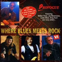where blues meets rock vol. 6