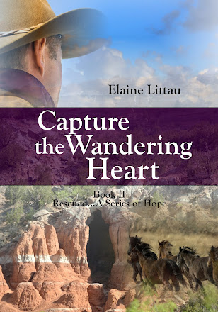 Capture the Wandering Heart