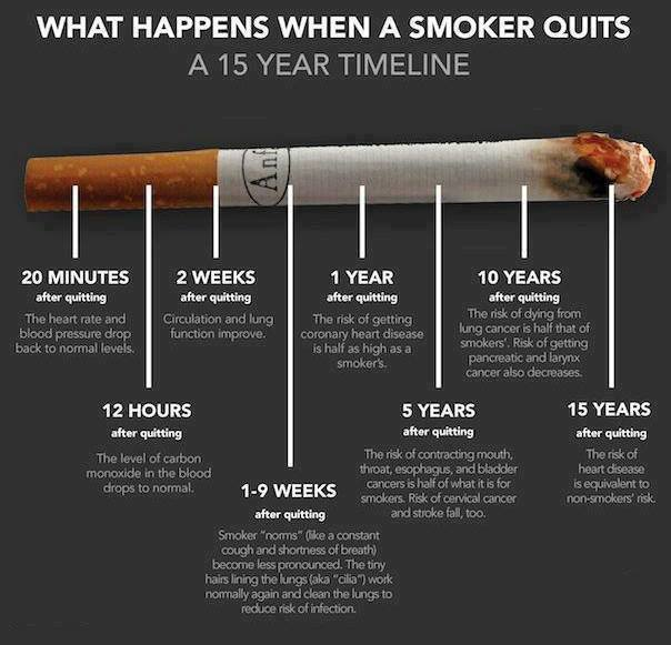 Did You Know That Just 1 9 Weeks After Quit Smoking The Little Hairs Or Cilia Line Your Lungs Begin To Work Normally Again Keep