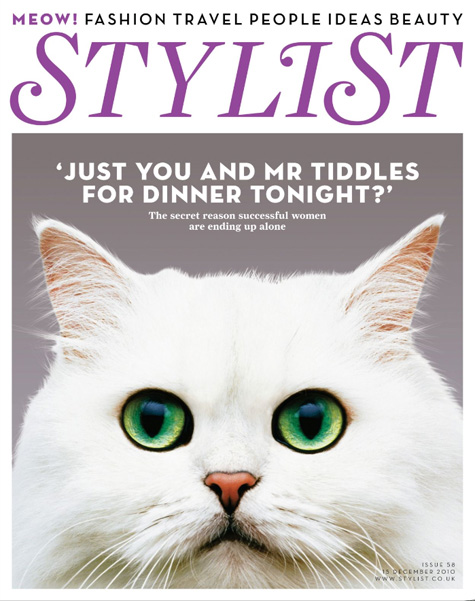 Stylist Cat Cover