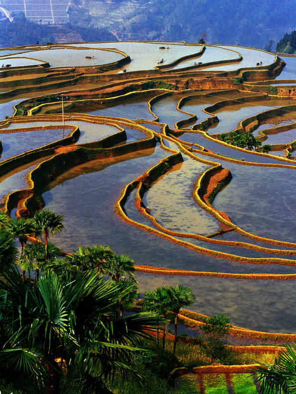 bensozia honghe hani rice terraces china