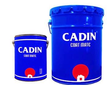 Kết quả hình ảnh cho sơn epoxy cadin