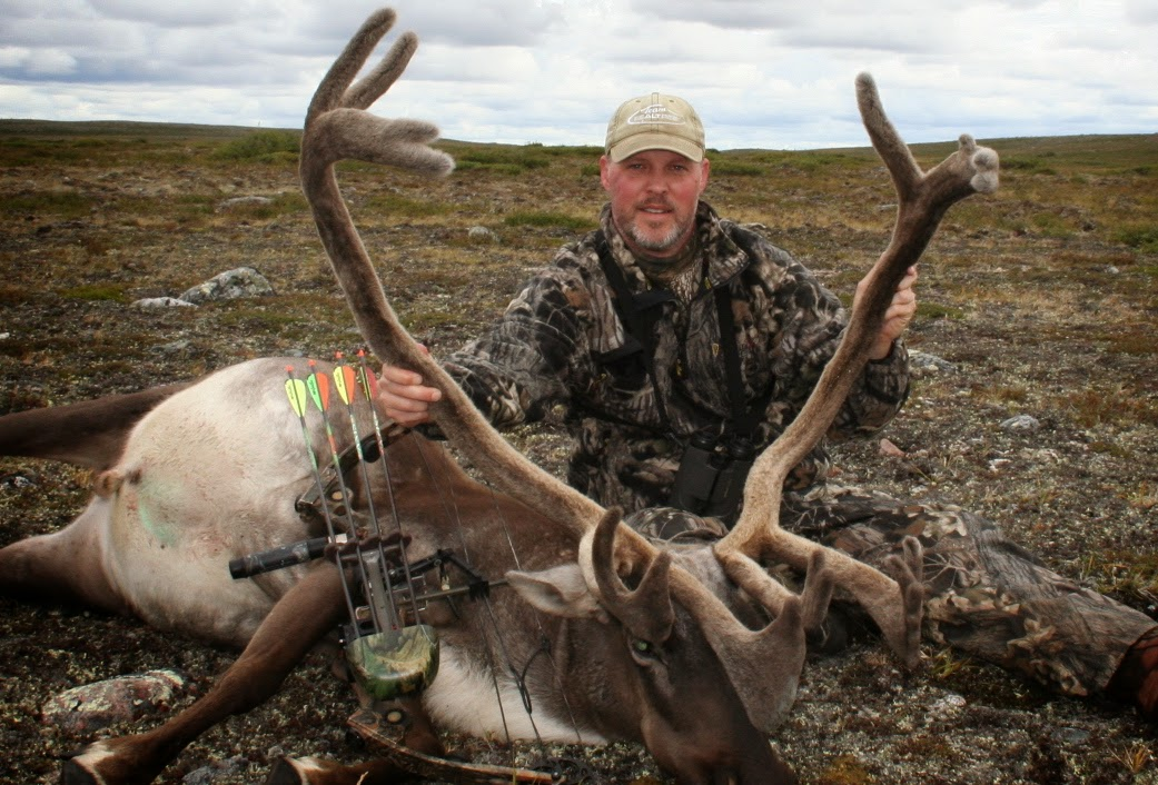 Northern Canada Caribou