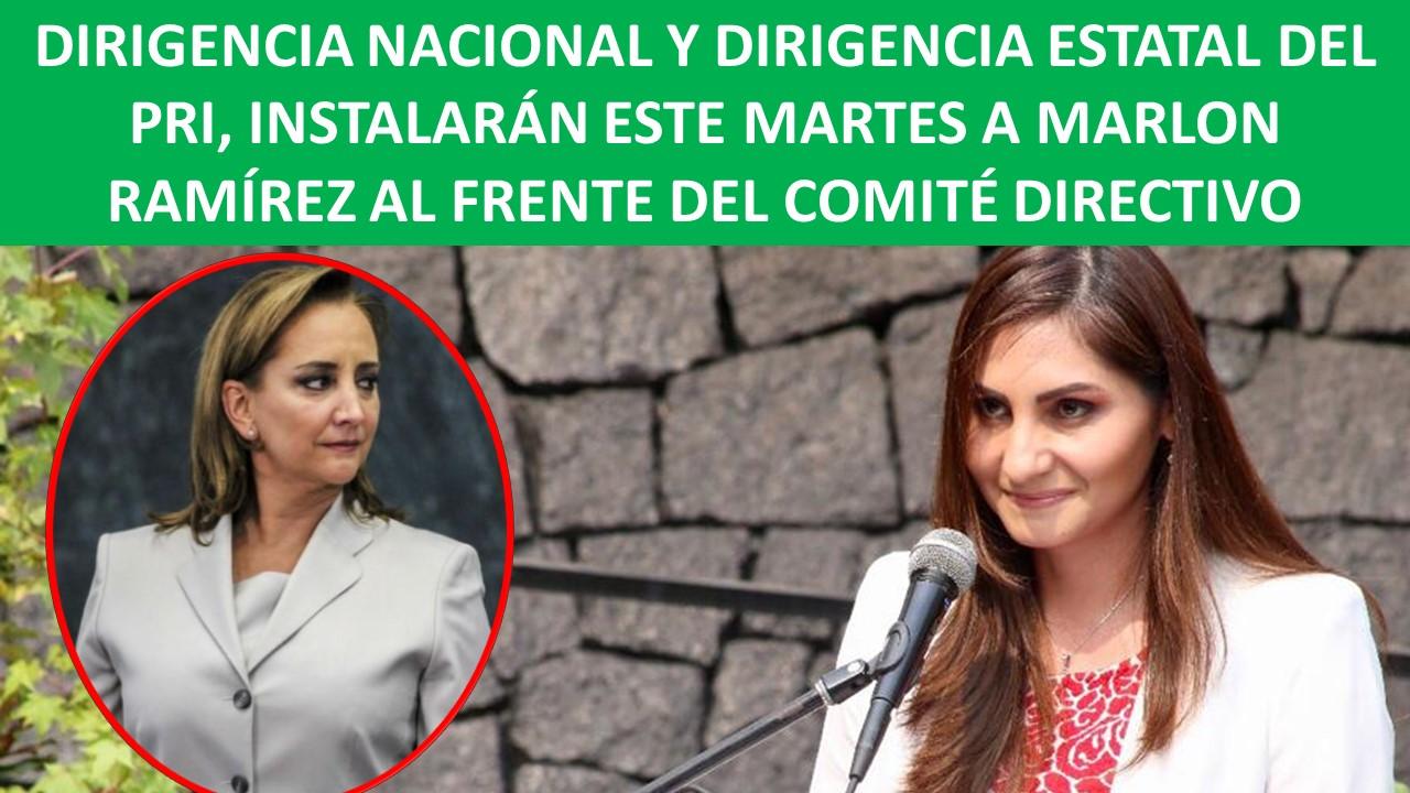 DIRIGENCIA NACIONAL Y DIRIGENCIA ESTATAL