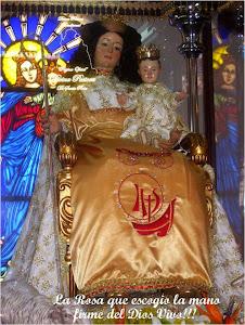 Facebook Oficial Divina Pastora de Santa Rosa 2013