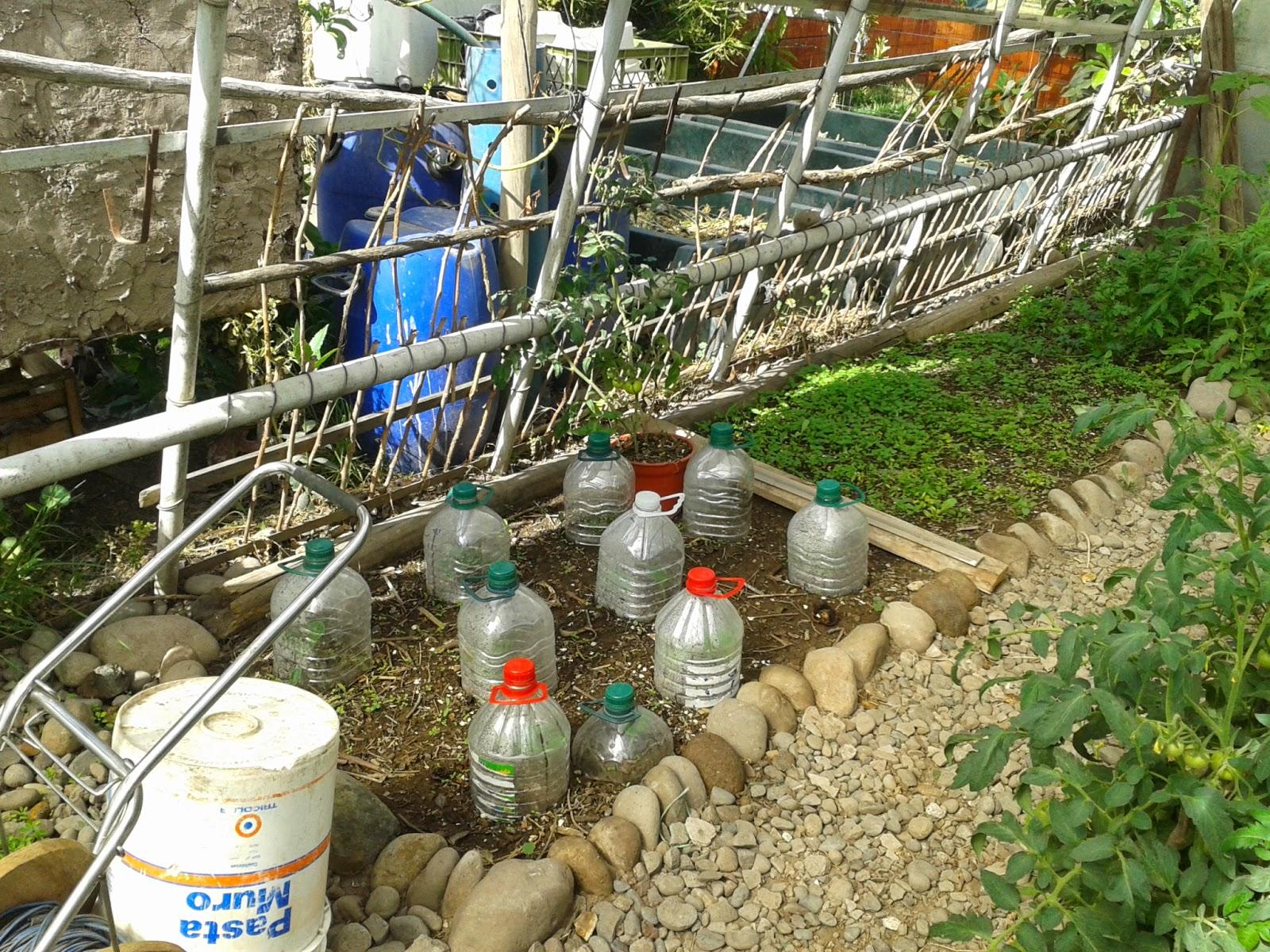 Ceibo maip sistema de riego de huerto por condensaci n - Riego por goteo para macetas ...