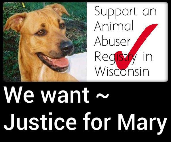 Justice for mary animal advocacy update on sean d janas the scum