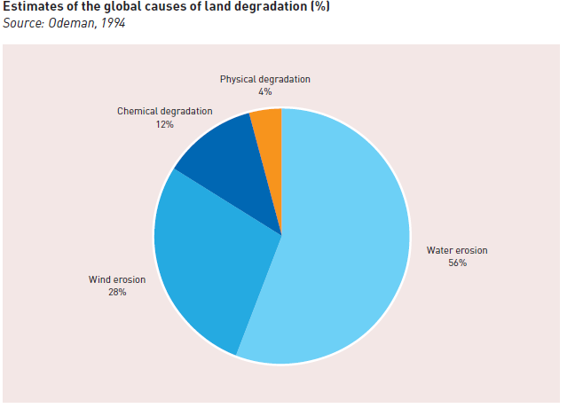 Land Degradation Management Food Security Agricultural Sustainability India World