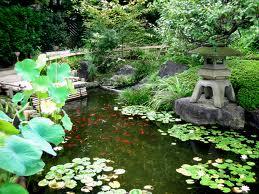 taman rumah dengan kolam ikan kecil