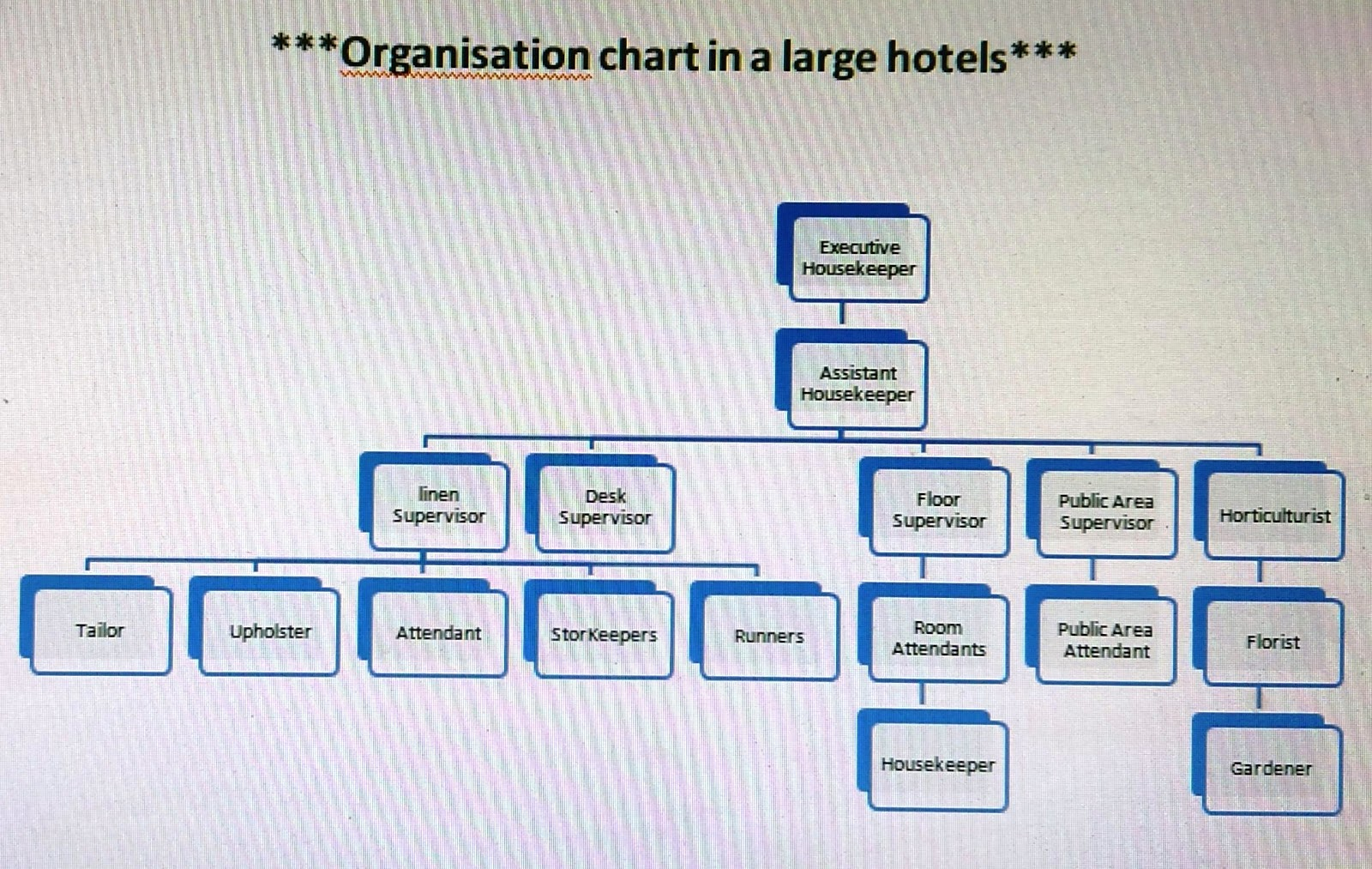 Hkfirstsem organization chart of housekeeping department - Organizational chart of the front office department ...