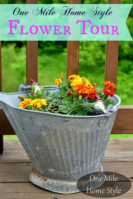 Flower Tour and Outdoor Spring Decor Tips   One Mile Home Style - Marigolds and galvanized bucket