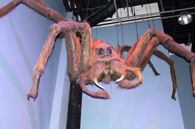Harry Potter Big spider