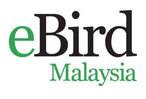 eBird Malaysia