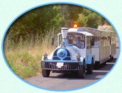 Train Ibiza